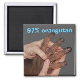 Orangutan and Human DNA Magnet