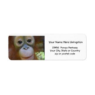 Orangután animal del amante etiqueta de remite