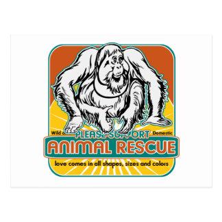 Orangután animal del rescate tarjeta postal
