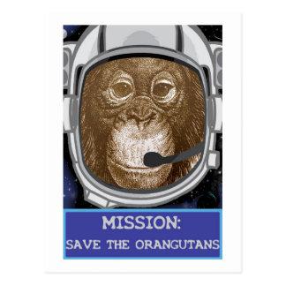Orangutan Animal Mission Postcards