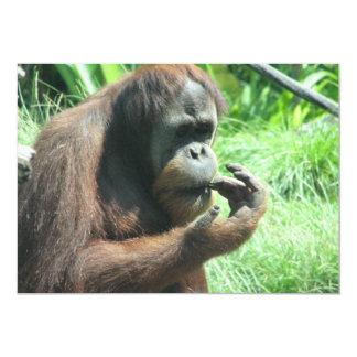 "Orangutan Ape Invitation 5"" X 7"" Invitation Card"