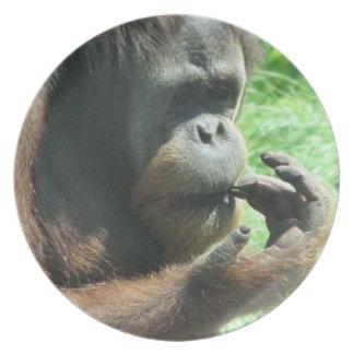 Orangutan Ape Plate