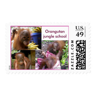 Orangutan Babies Jungle School Recess Postage