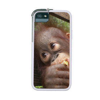 Orangutan Baby Dreaming of Mommy iPhone 5/5S Cases
