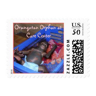Orangutan Baby Orphan at Care Center in Borneo Postage