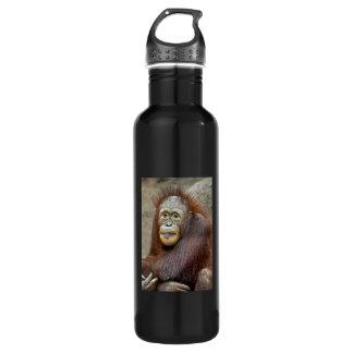 Orangutan Baby Stainless Steel Water Bottle