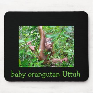 Orangutan Baby Uttuh at OFI Care Center Mouse Pad