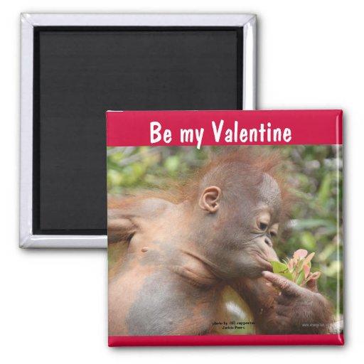 Orangutan Baby Valentine's Day 2 Inch Square Magnet