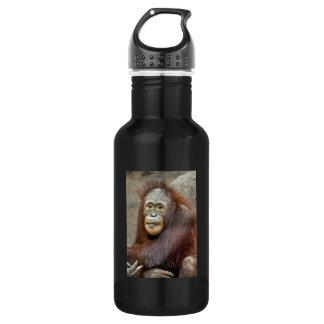 Orangutan Baby Water Bottle