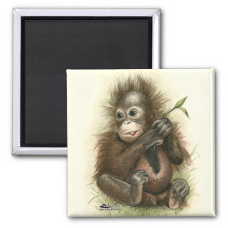 Orangutan Baby With Leaves 2 Inch Square Magnet