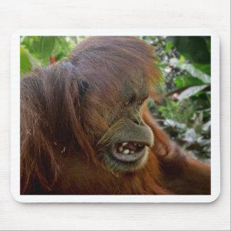 "Orangutan ""Bad Hair Day"" Mouse Pad"
