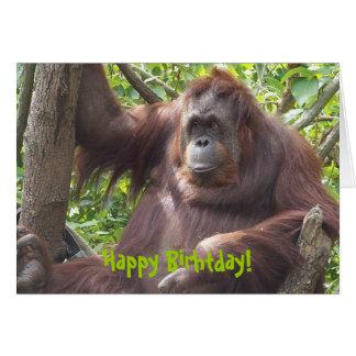 ¡Orangután Birhtday feliz! Tarjetas