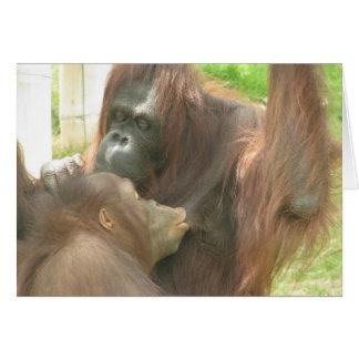 Orangutan Breastfeeding Greeting Cards
