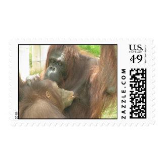 Orangutan Breastfeeding Stamp