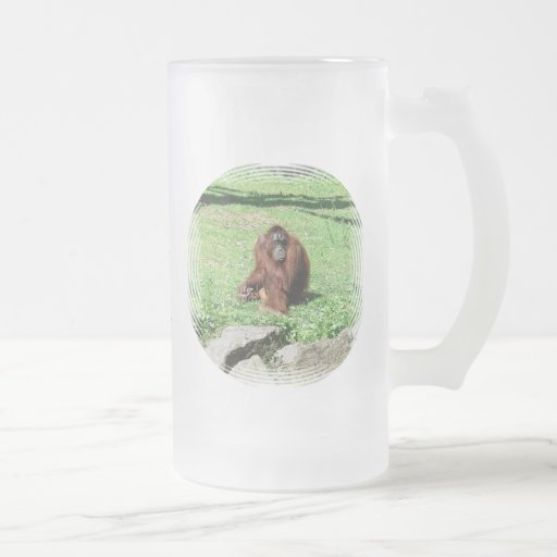 Orangután cabelludo rojo marrón que se sienta en h taza cristal mate