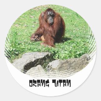 Orangután cabelludo rojo marrón que se sienta en pegatina redonda