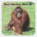 Orangután cabelludo rojo marrón que se sienta en calcomania cuadradas personalizadas