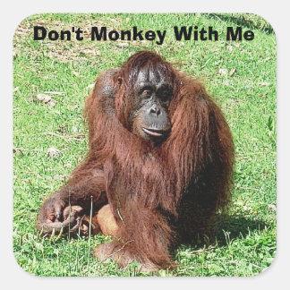 Orangután cabelludo rojo marrón que se sienta en pegatina cuadrada