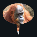 "Orangutan Cake Topper<br><div class=""desc"">add text or upload your own image</div>"