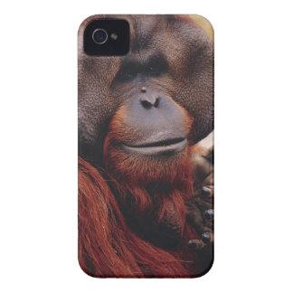 Orangután Carcasa Para iPhone 4