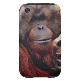 Orangután Carcasa Though Para iPhone 3