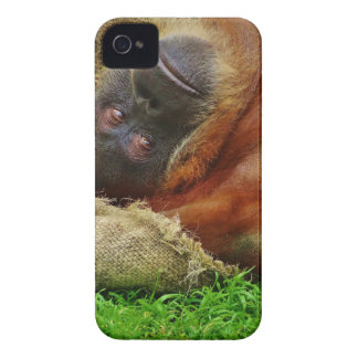Orangutan Case-Mate iPhone 4 Case