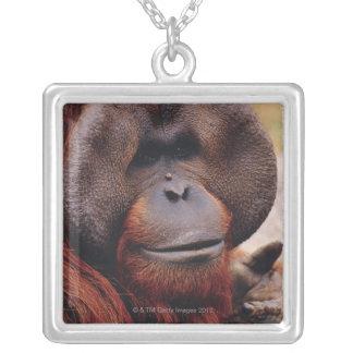 Orangután Collar Plateado