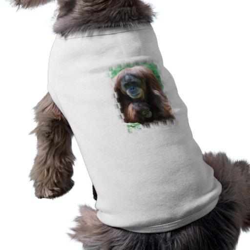 Orangután con la camisa del mascota del bebé camiseta de mascota
