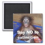 Orangutan Conservation 2 Inch Square Magnet