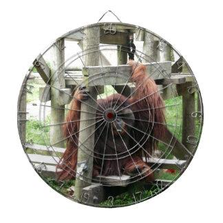 Orangutan Dart Boards