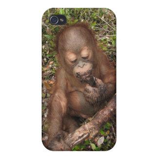 Orangután de George Baru iPhone 4/4S Carcasa