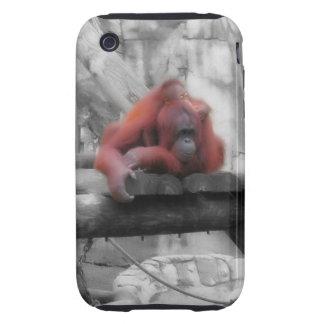 Orangután de la madre y del bebé iPhone 3 tough cárcasa