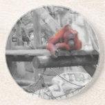 Orangután de la madre y del bebé posavasos personalizados