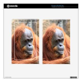 Orangutan Decal For Kindle Fire