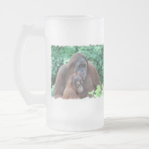 Orangután del bebé con la taza de la madre