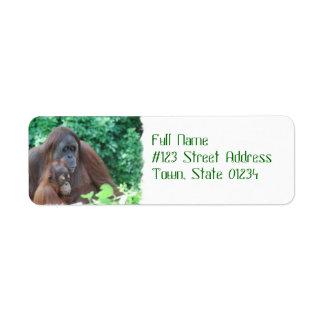Orangután del bebé con las etiquetas de correo de etiquetas de remite