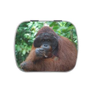 Orangután del varón adulto en Borneo Frascos De Dulces