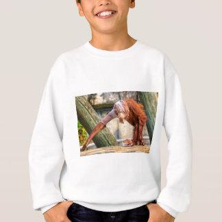 Orangután divertido playeras