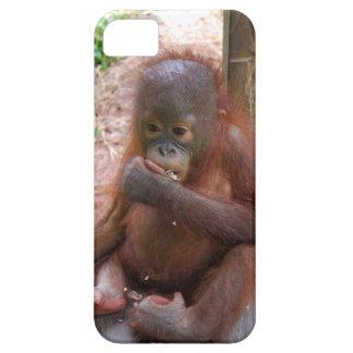 Orangután dulce de los animales del bebé iPhone 5 fundas