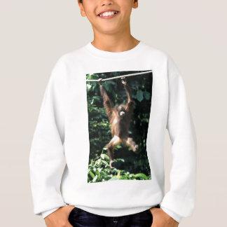 Orangután en Borneo Camisas