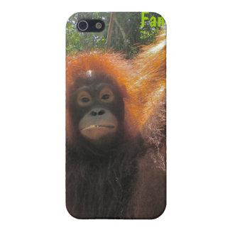 Orangután en Borneo iPhone 5 Carcasas