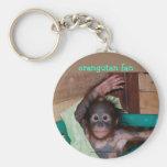 Orangután en el santuario llavero
