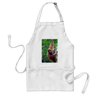 Orangután en la selva Sumatra de la selva tropical Delantal