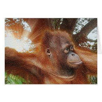 Orangután en tarjeta de nota en peligro selva de l