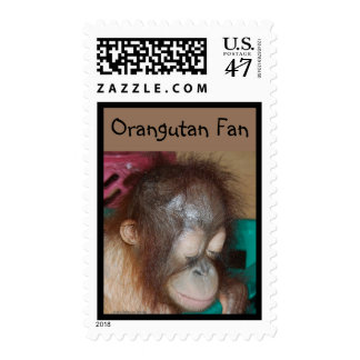 Orangutan Eyes Postage
