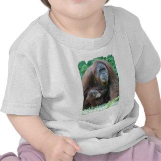 Orangutan Family  Baby T-Shirt