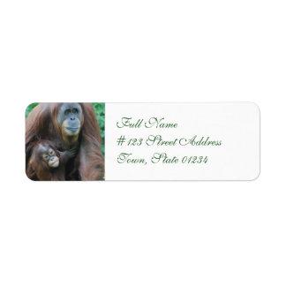 Orangutan Family Mailing Labels