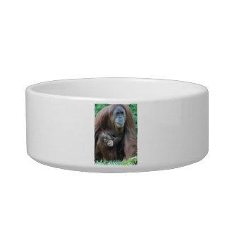 Orangutan Family Pet Bowl Cat Food Bowls