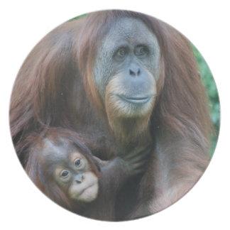 Orangutan Family Plate