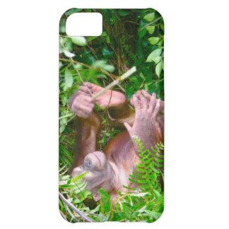Orangután feliz de la actitud de la yoga del bebé funda para iPhone 5C